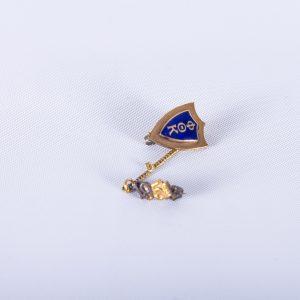 Phi Theta Kappa Pin 2