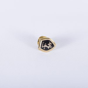 SIGMA TAU DELTA English Honor Society, Goldtone Tie TackMembership Pin